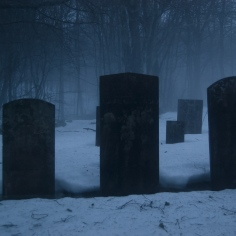 Life, love & death