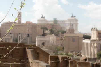 Roman Forum with view of the Vittorio Emanuele