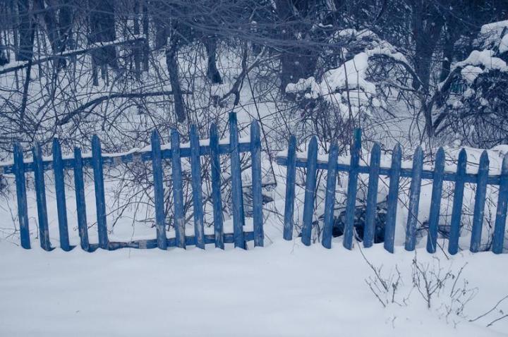 Blue Fence – February 12,2016